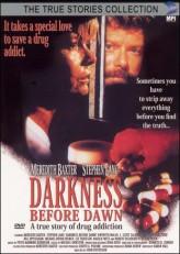 Darkness Before Dawn (1993) afişi