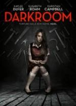 Darkroom (2013) afişi