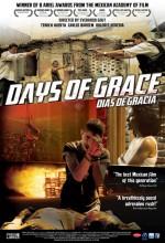 Días De Gracia (2011) afişi
