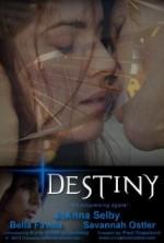Destiny (2013) afişi