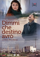My Destiny (2012) afişi
