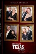 Divorce Texas Style (2013) afişi