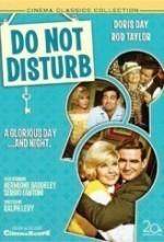 Do Not Disturb (ı)