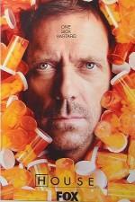 Doktor House (2004) afişi