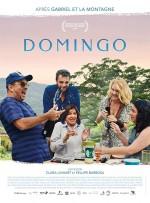 Domingo (2018) afişi