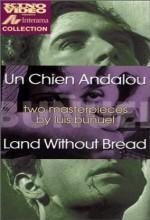 Ekmeksiz Toprak (1933) afişi