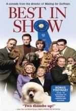 En Güzel Köpek (2000) afişi