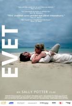 Evet (2004) afişi