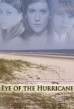 Kasırganın Gözü (2012) afişi