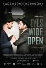 Eyes Wide Open (2009) afişi