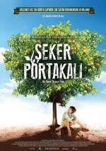 Şeker Portakalı (2012) afişi