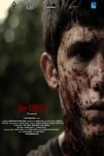 Çatlak (2012) afişi
