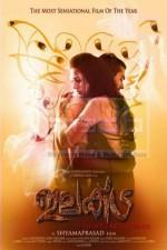 Elektra (2010) afişi