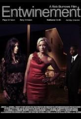 Entwinement (2012) afişi