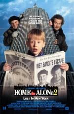 Evde Tek Başına 2 (1992) afişi