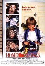 Evde Tek Başına 3 (1997) afişi