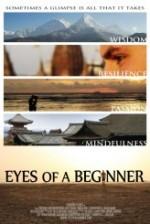 Eyes of a Beginner (2012) afişi