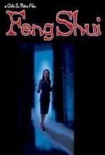 Feng Shui (2004) afişi