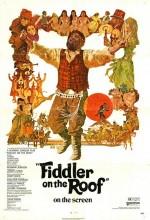 Damdaki Kemancı (1971) afişi