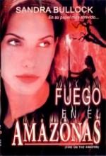 Fire On The Amazon (1993) afişi