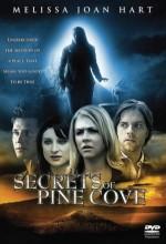 Fısıltılar Ve Yalanlar (2008) afişi