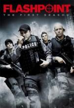 Flashpoint (2010) afişi