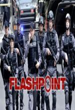 Flashpoint (2009) afişi
