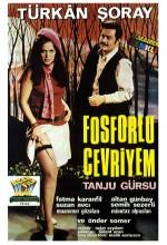 Fosforlu Cevriyem (1969) afişi