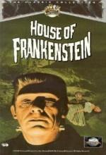 Frankenstein'ın Evi (1944) afişi