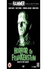 Frankenstein'nın Dehşeti