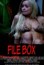 File Box (2013) afişi