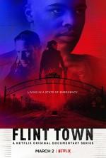 Flint Town  afişi