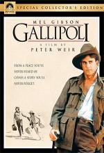 Gelibolu (1981) afişi