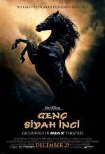 Genç Siyah İnci (2003) afişi