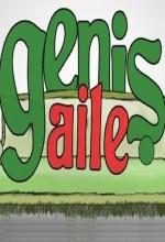 Geniş Aile (2010) afişi