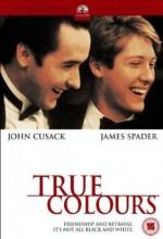 Gerçeği Arayış (1991) afişi