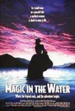 Göldeki Sihir (1995) afişi