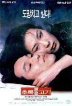 Green Fish (1997) afişi