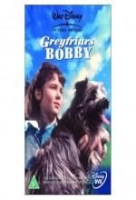Greyfriars Bobby: The True Story of a Dog (1961) afişi