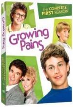 Growing Pains (1991) afişi
