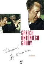 Grzech Antoniego Grudy (1975) afişi