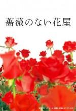 Gülsüz Çiçekçi