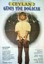 Güneş Yine Doğacak (1989) afişi