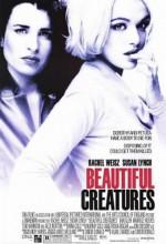 Güzel Şeyler (2000) afişi