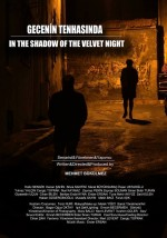 Gecenin Tenhasında (2014) afişi
