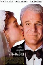 Gelinin Babası (1991) afişi