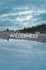 Go in the Wilderness (2013) afişi