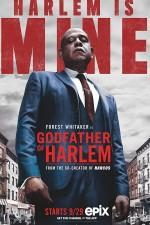 Godfather of Harlem Sezon 1 (2019) afişi
