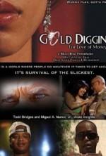 Gold Diggin : For Love of Money (2008) afişi