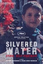 Gümüşlü Su, Suriye'nin Otoportresi